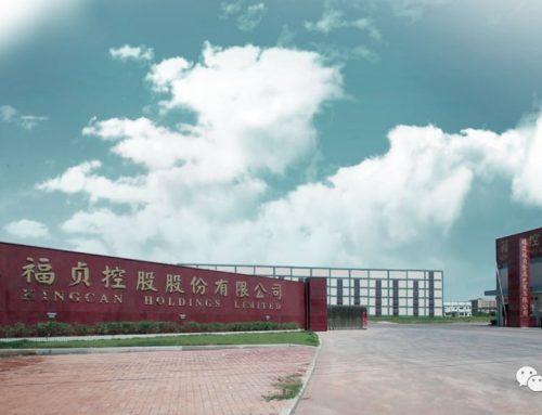 """福贞控股:""""创新""""是引领企业发展的源动力"""